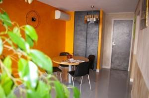 Showroom A Fleur de Chaux et MS Pro sur Montpellier dans badigeons de chaux 6-entree-stuc-badigeon-metallisation-copier-300x199